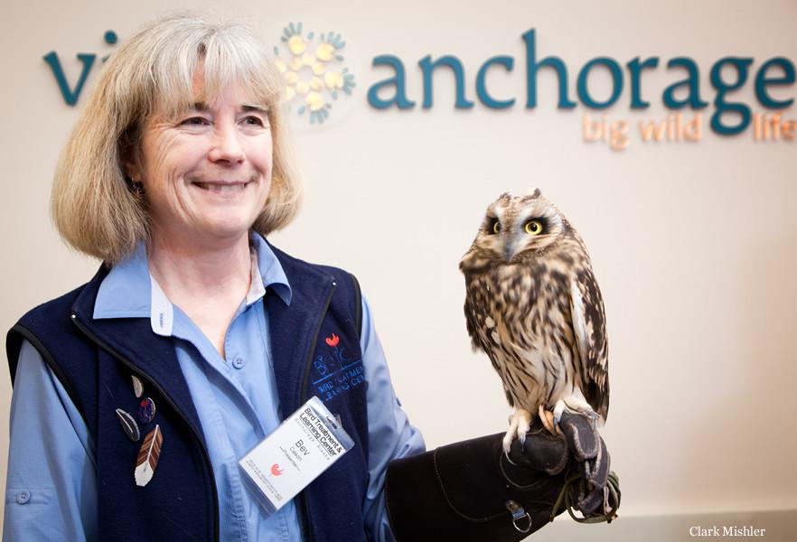 Alaskan Rescued Birds