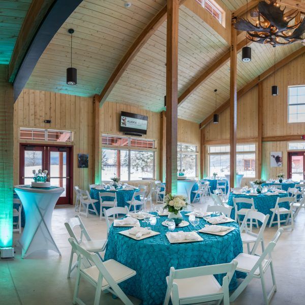 Bison Hall Aqua/White Decor